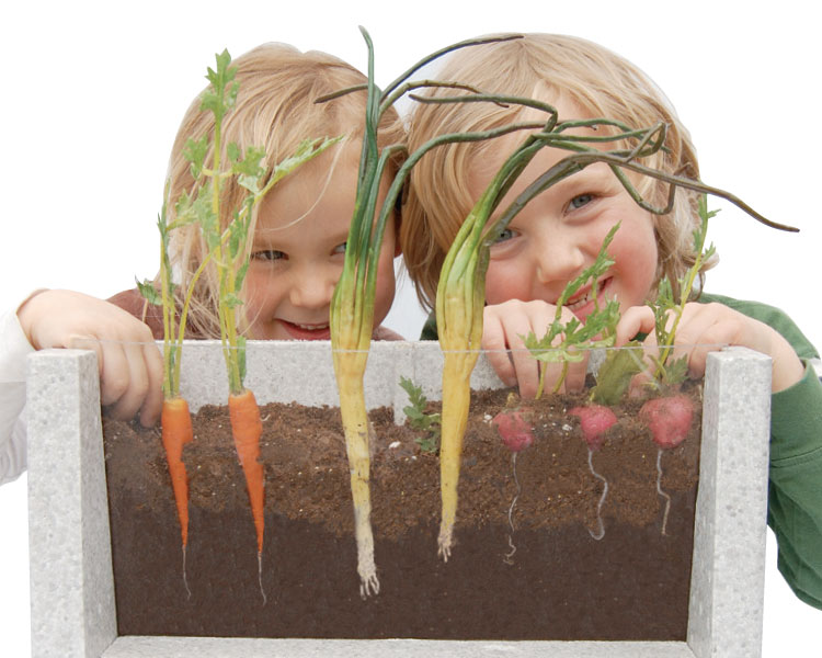 Root-Vue Farm Kids Gardening